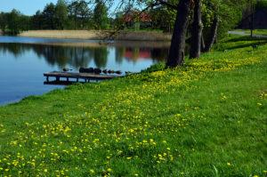 Stara Szkoła - Jezioro